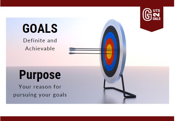 goals verses purpose